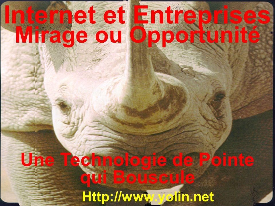Internet et Entreprises Mirage ou Opportunité Http://www.yolin.net Une Technologie de Pointe qui Bouscule