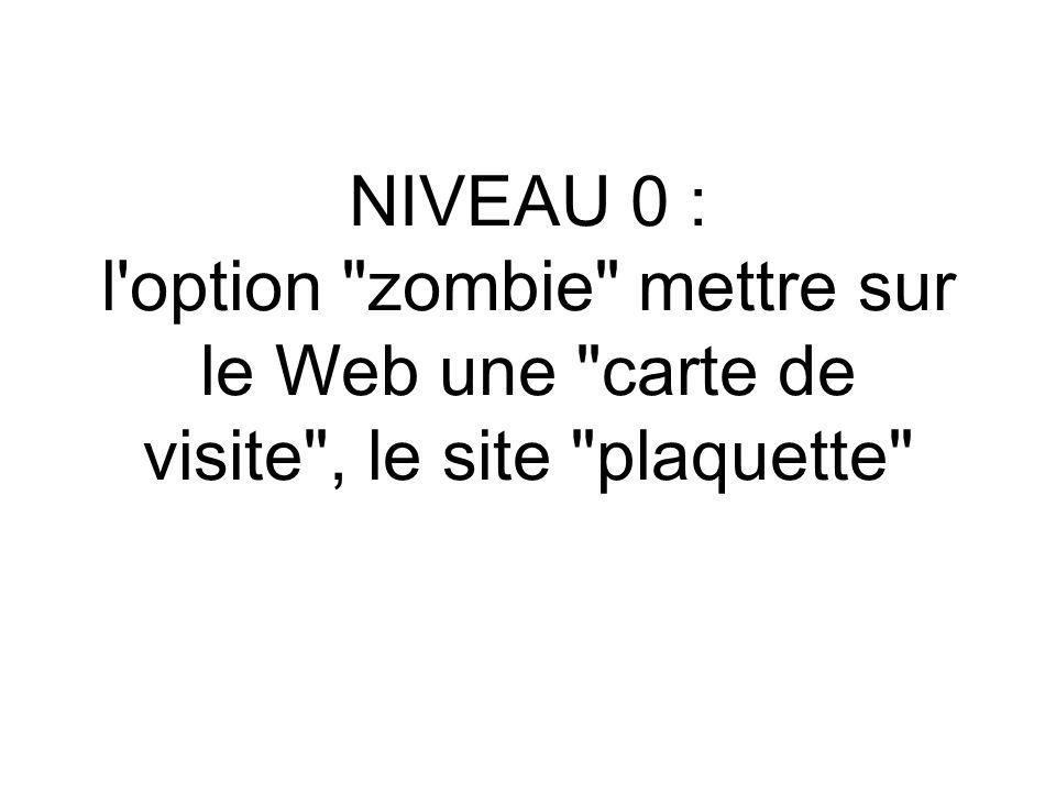 NIVEAU 0 : l option zombie mettre sur le Web une carte de visite , le site plaquette