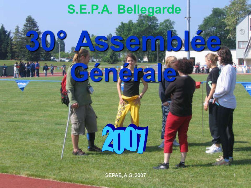 SEPAB, A.G. 20071 30° Assemblée Générale S.E.P.A. Bellegarde