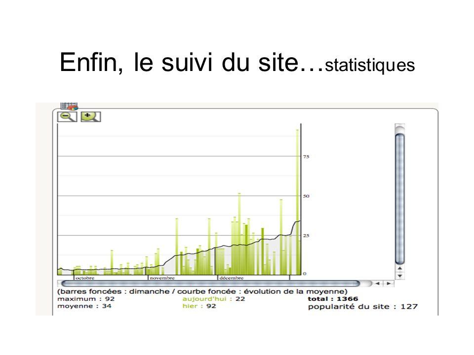 Enfin, le suivi du site… statistiques