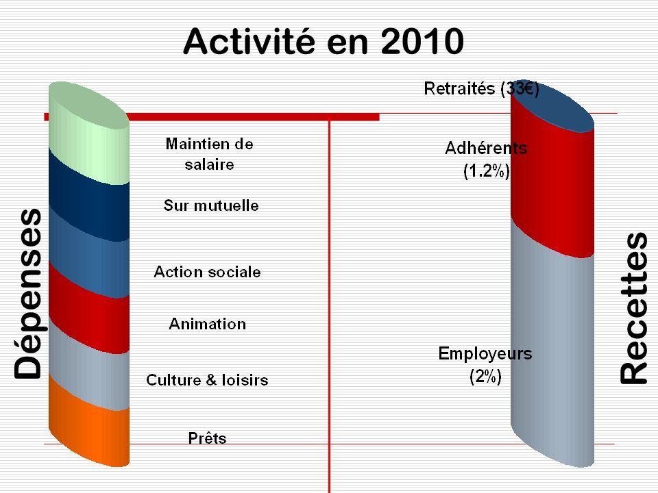 Activité en 2010 Dépenses Recettes