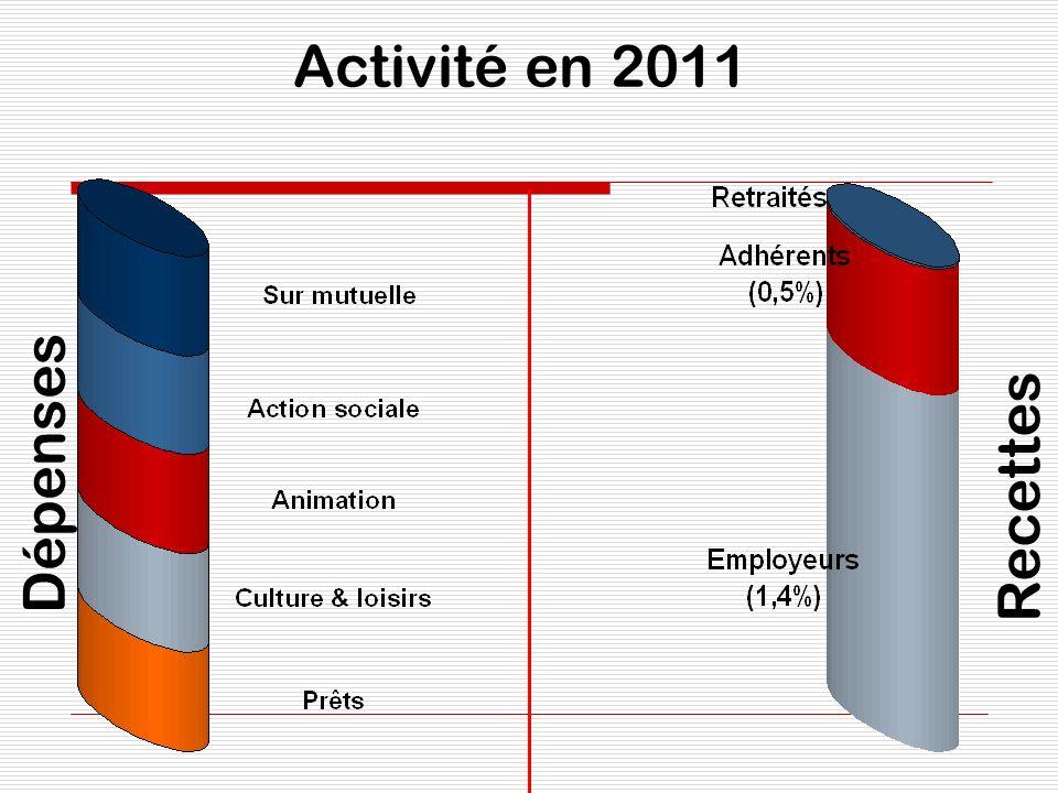 Activité en 2011 Dépenses Recettes