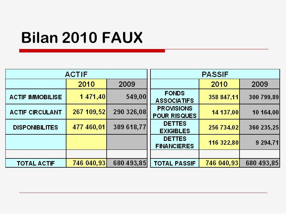 Bilan 2010 FAUX