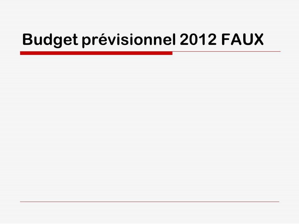 Budget prévisionnel 2012 FAUX