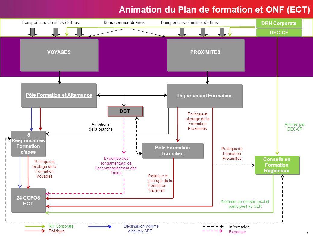 3 Animation du Plan de formation et ONF (ECT) 5 Responsables Formation daxes DDT Pôle Formation Transilien 24 COFOS ECT 24 COFOS ECT Département Forma
