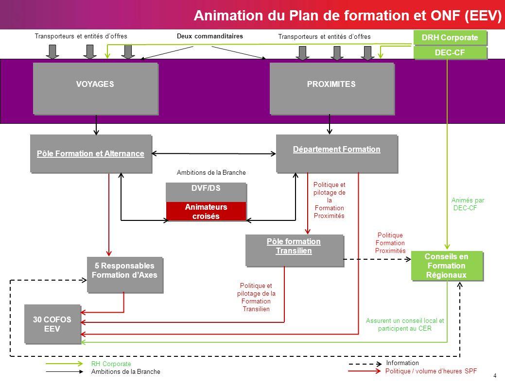 4 Animation du Plan de formation et ONF (EEV) 5 Responsables Formation dAxes DVF/DS Pôle formation Transilien 30 COFOS EEV 30 COFOS EEV Département Fo