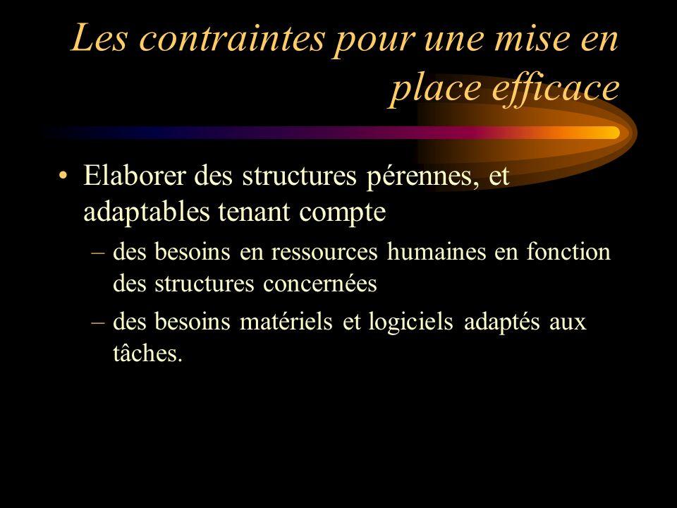 Les contraintes pour une mise en place efficace Elaborer des structures pérennes, et adaptables tenant compte –des besoins en ressources humaines en f