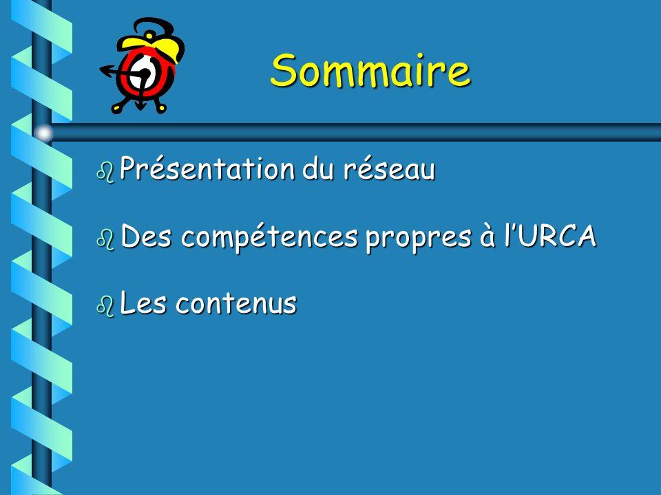 Sommaire b Présentation du réseau b Des compétences propres à lURCA b Les contenus