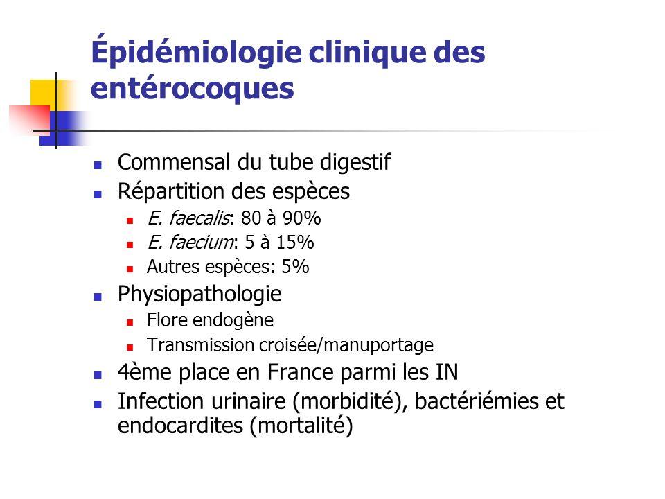 Épidémiologie clinique des entérocoques Commensal du tube digestif Répartition des espèces E. faecalis: 80 à 90% E. faecium: 5 à 15% Autres espèces: 5