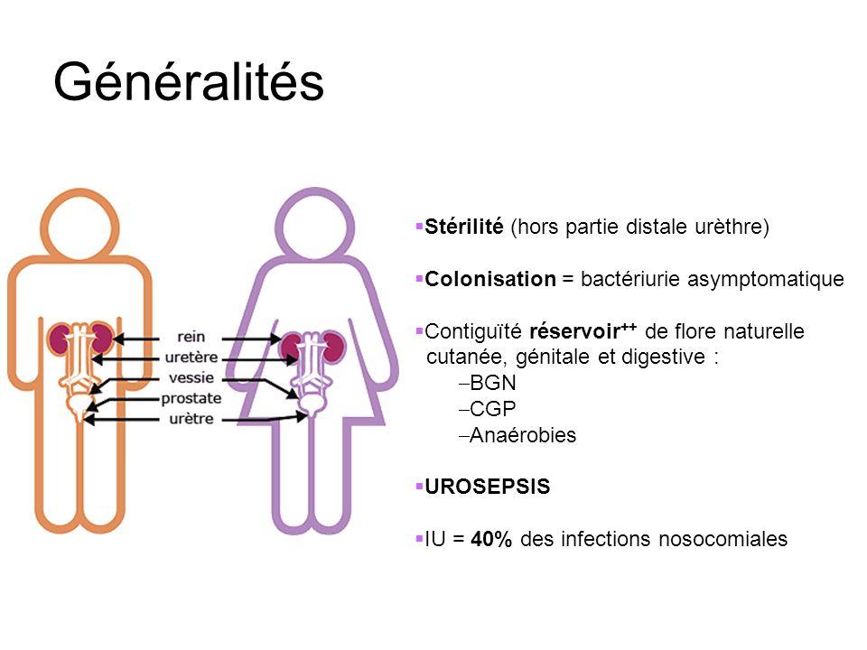 Généralités Stérilité (hors partie distale urèthre) Colonisation = bactériurie asymptomatique Contiguïté réservoir ++ de flore naturelle cutanée, géni