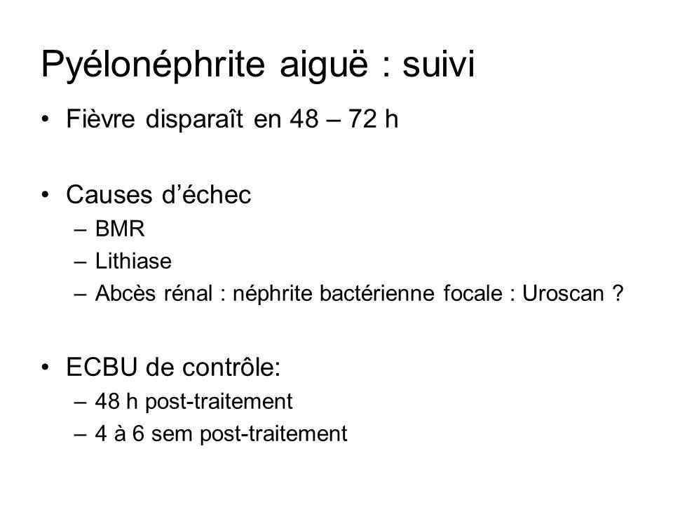 Pyélonéphrite aiguë : suivi Fièvre disparaît en 48 – 72 h Causes déchec –BMR –Lithiase –Abcès rénal : néphrite bactérienne focale : Uroscan ? ECBU de