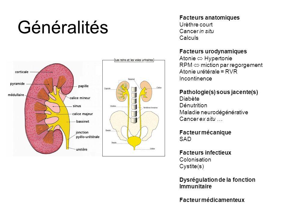 Pyélonéphrite aiguë : traitement ATB À débuter dès les prélèvements effectués Forme simple = monothérapie –C3G IV –FQ PO si pas de vomissements ou IV Forme compliquée = obstacle, diabète, choc septique, BMR = bithérapie IV –C3G IV ou FQ IV –+ Aminoside DUJ (72h) Adaptation à lantibiogramme +++, si colonisation BMR Relais PO à 48h dapyrexie