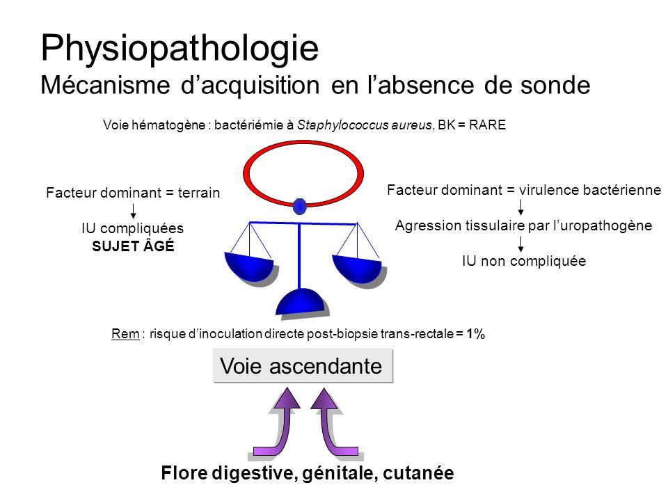 Physiopathologie Mécanisme dacquisition en labsence de sonde Facteur dominant = virulence bactérienne Agression tissulaire par luropathogène IU non co