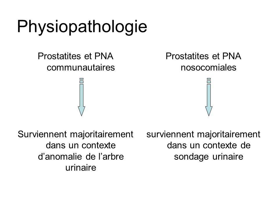 Physiopathologie Prostatites et PNA communautaires Surviennent majoritairement dans un contexte danomalie de larbre urinaire Prostatites et PNA nosoco