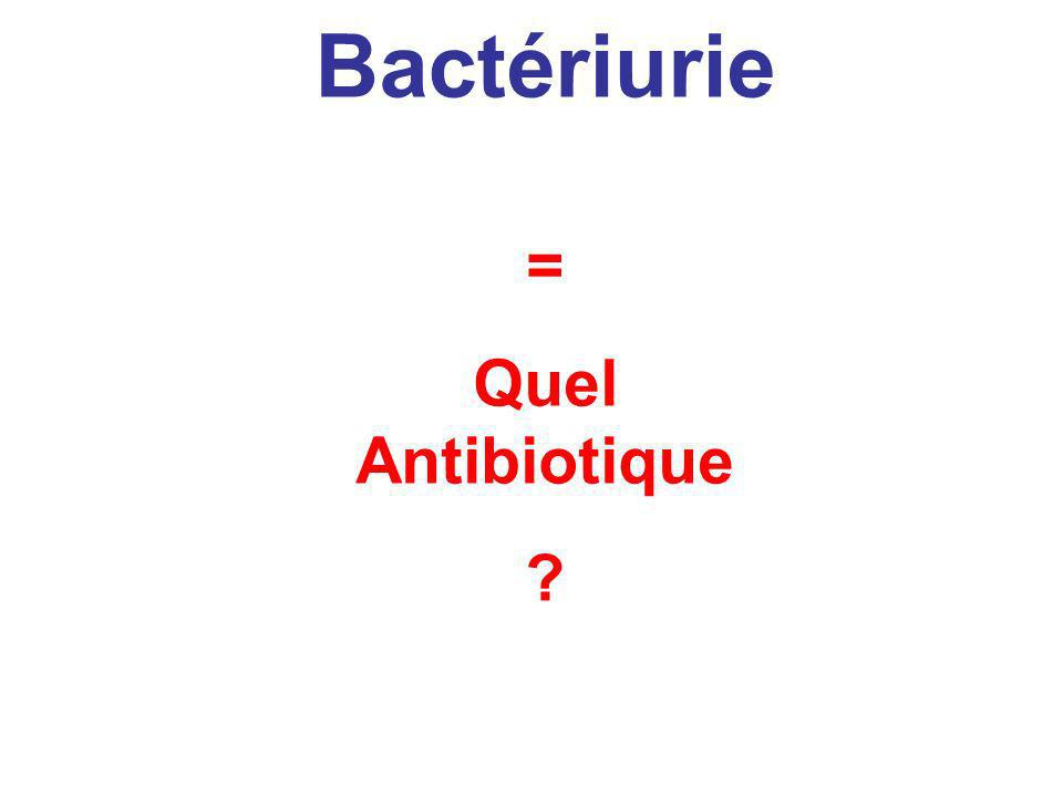 = Quel Antibiotique ? Bactérie Bactériurie