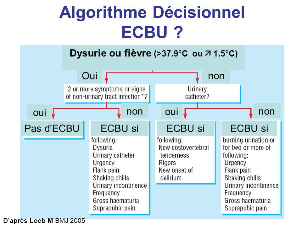 Pas dECBU oui Oui oui non Dysurie ou fièvre (>37.9°C ou 1.5°C) ECBU si Daprès Loeb M BMJ 2005 Algorithme Décisionnel ECBU ?