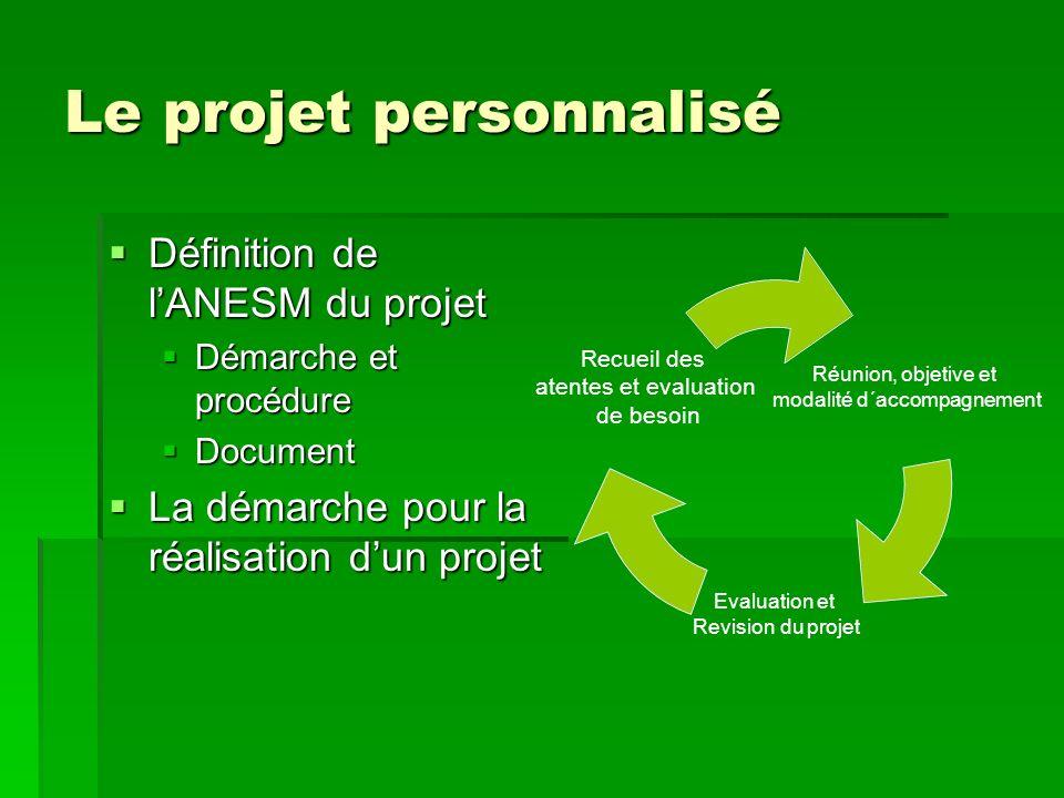 Le projet personnalisé Définition de lANESM du projet Définition de lANESM du projet Démarche et procédure Démarche et procédure Document Document La