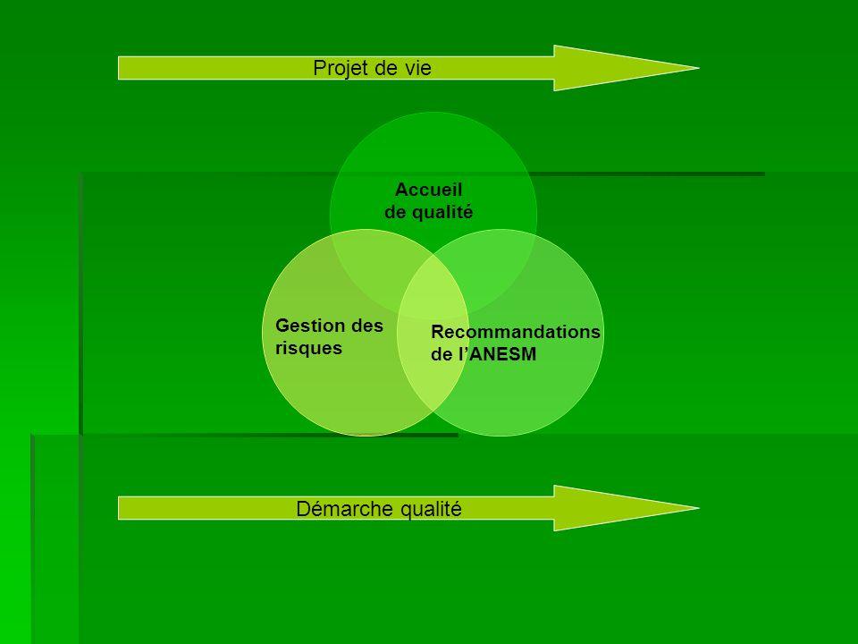 Gestion des risques Accueil de qualité Recommandations de lANESM Projet de vie Démarche qualité