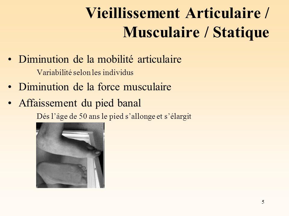5 Vieillissement Articulaire / Musculaire / Statique Diminution de la mobilité articulaire Variabilité selon les individus Diminution de la force musc