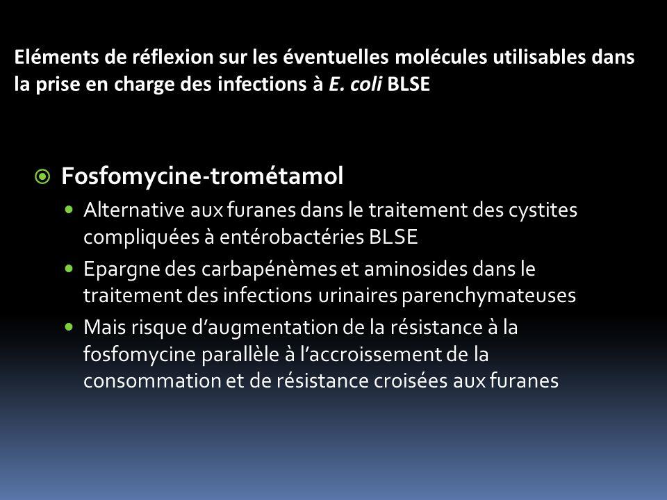 Eléments de réflexion sur les éventuelles molécules utilisables dans la prise en charge des infections à E.