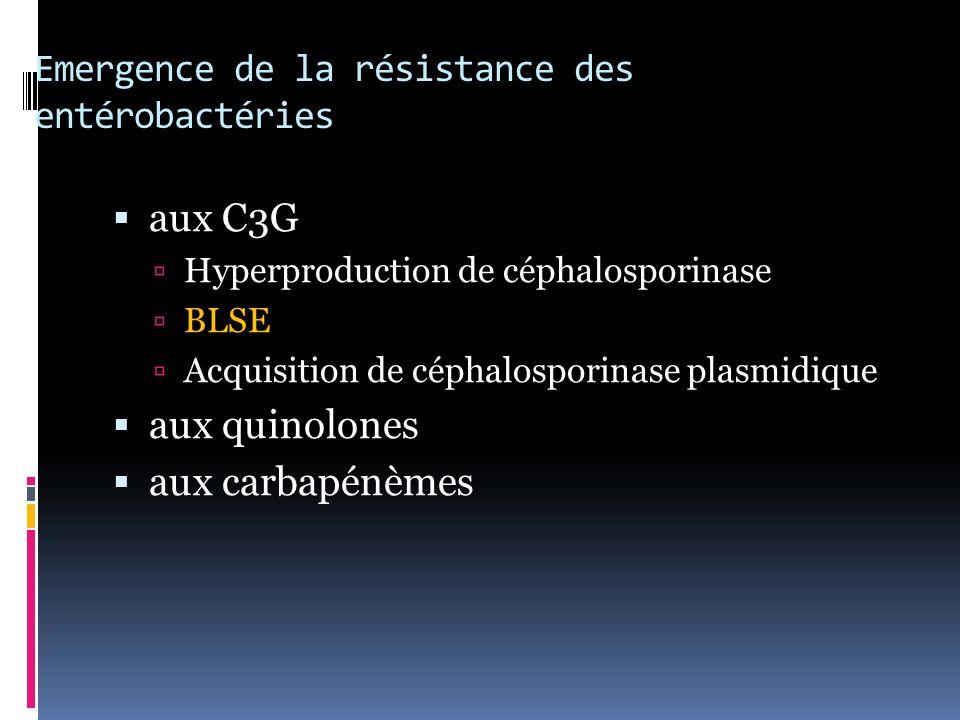 Emergence de la résistance des entérobactéries aux C3G Hyperproduction de céphalosporinase BLSE Acquisition de céphalosporinase plasmidique aux quinolones aux carbapénèmes