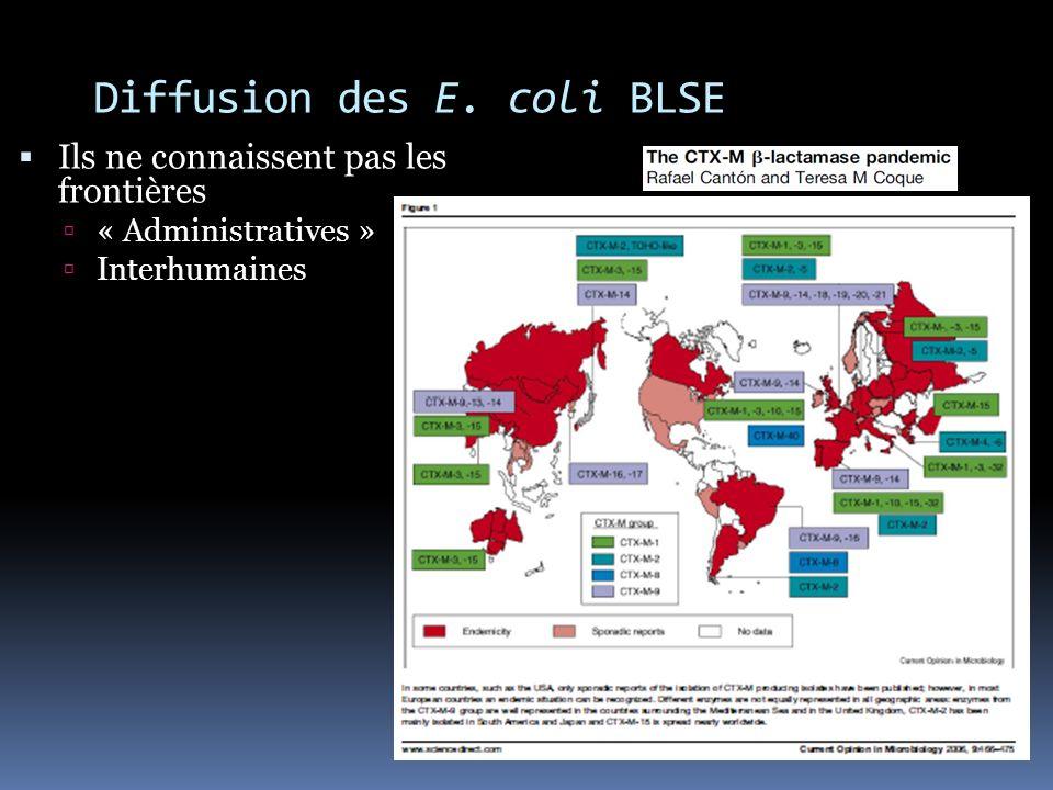 Diffusion des E. coli BLSE Ils ne connaissent pas les frontières « Administratives » Interhumaines