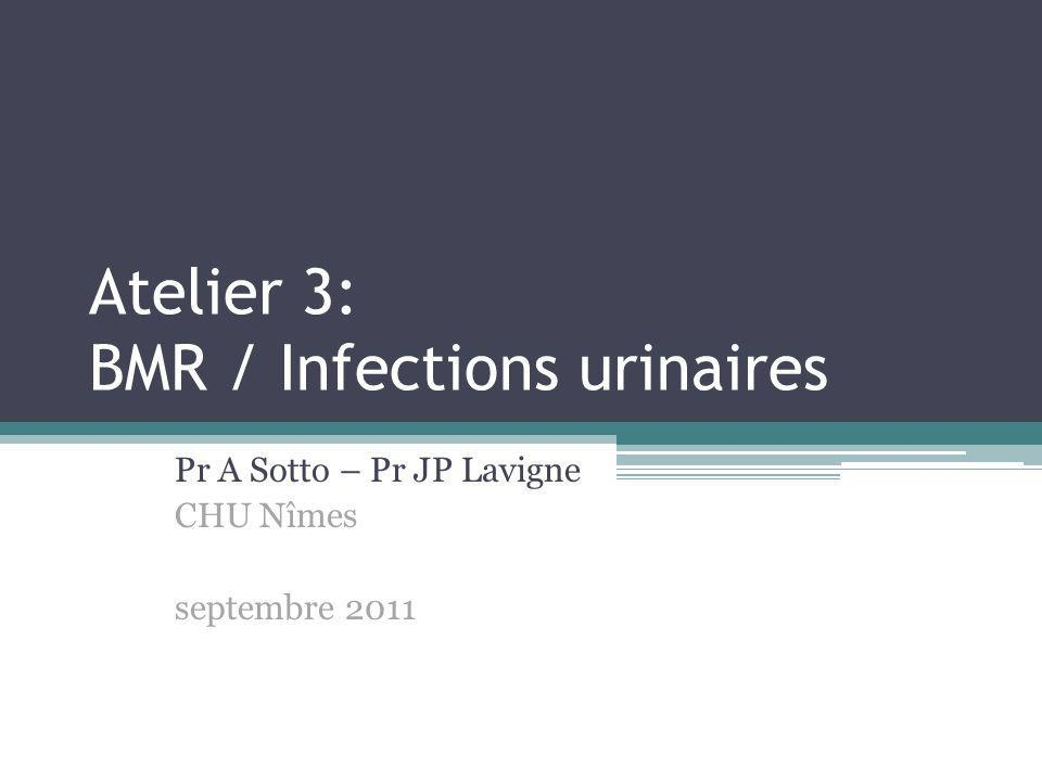 Atelier 3: BMR / Infections urinaires Pr A Sotto – Pr JP Lavigne CHU Nîmes septembre 2011