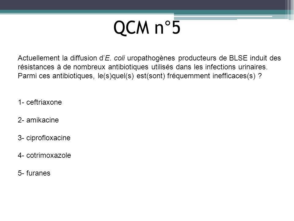 QCM n°5 Actuellement la diffusion dE. coli uropathogènes producteurs de BLSE induit des résistances à de nombreux antibiotiques utilisés dans les infe