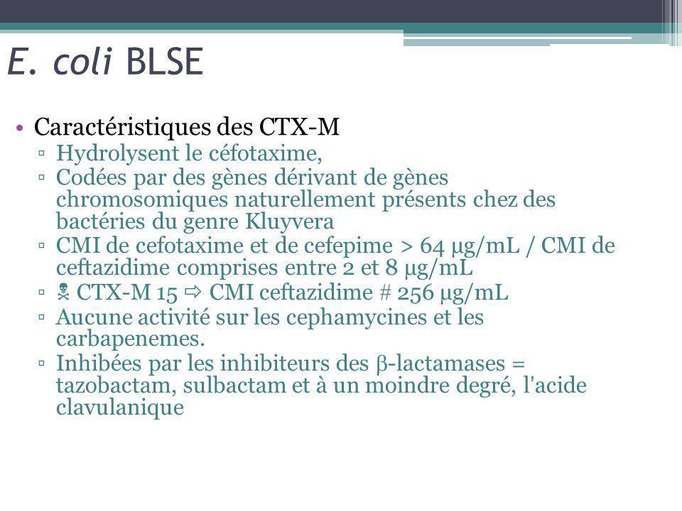 E. coli BLSE Caractéristiques des CTX-M Hydrolysent le céfotaxime, Codées par des gènes dérivant de gènes chromosomiques naturellement présents chez d