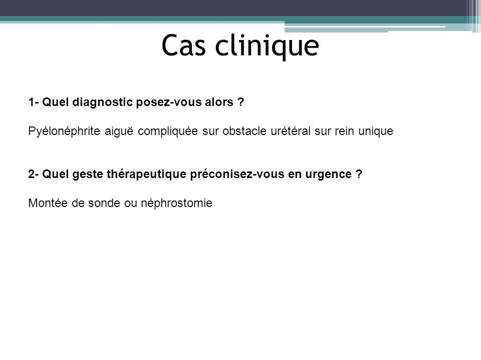 1- Quel diagnostic posez-vous alors ? Pyélonéphrite aiguë compliquée sur obstacle urétéral sur rein unique 2- Quel geste thérapeutique préconisez-vous