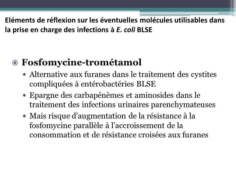 Eléments de réflexion sur les éventuelles molécules utilisables dans la prise en charge des infections à E. coli BLSE Fosfomycine-trométamol Alternati