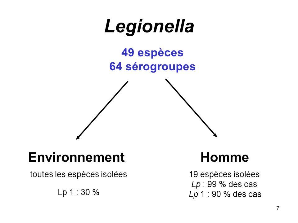 7 49 espèces 64 sérogroupes EnvironnementHomme toutes les espèces isolées Lp 1 : 30 % 19 espèces isolées Lp : 99 % des cas Lp 1 : 90 % des cas Legione