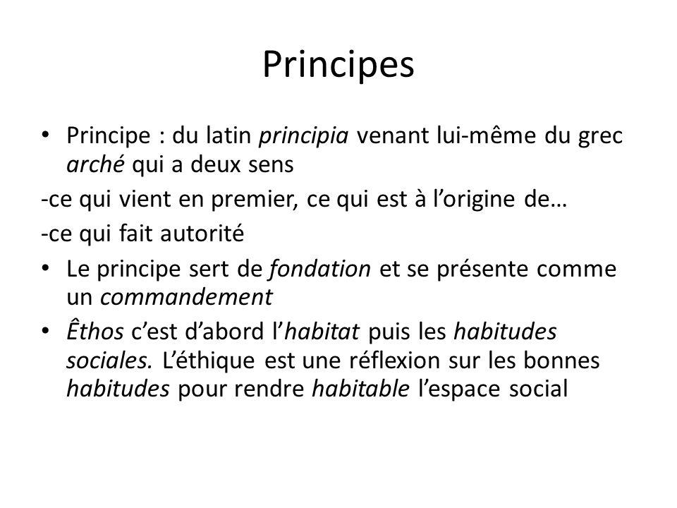 Principes Principe : du latin principia venant lui-même du grec arché qui a deux sens -ce qui vient en premier, ce qui est à lorigine de… -ce qui fait