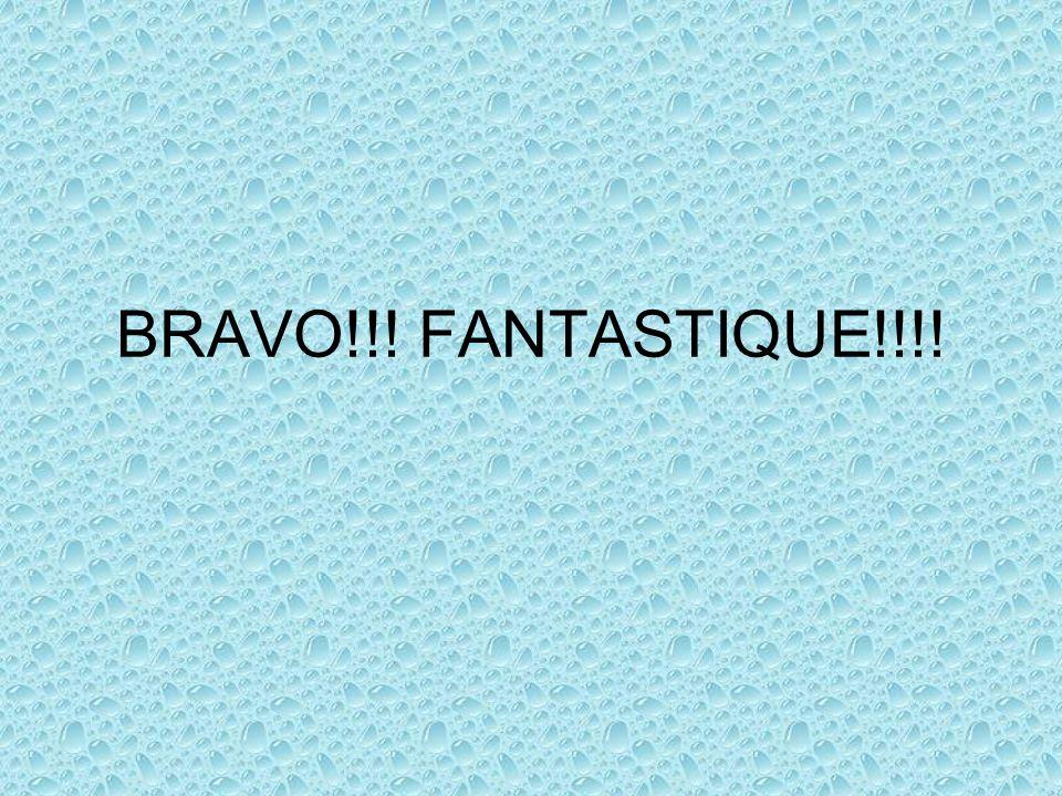 BRAVO!!! FANTASTIQUE!!!!