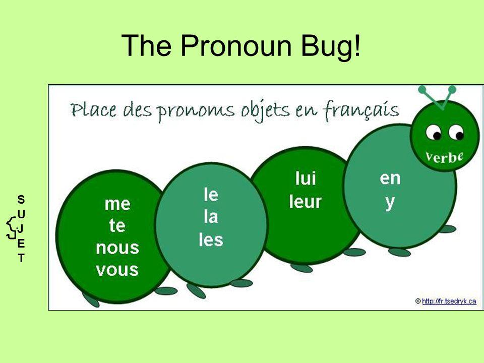 The Pronoun Bug! SUJETSUJET