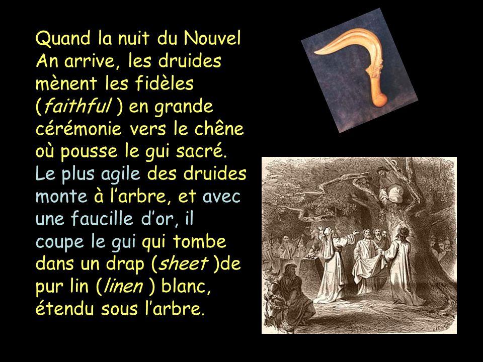 Quand la nuit du Nouvel An arrive, les druides mènent les fidèles (faithful ) en grande cérémonie vers le chêne où pousse le gui sacré. Le plus agile