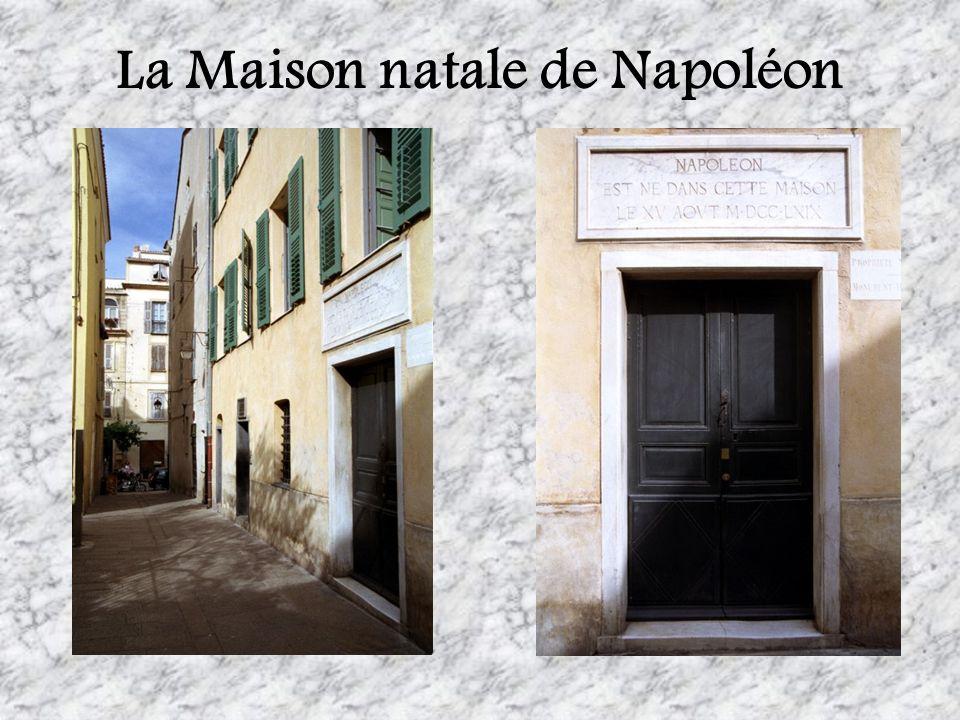 Le jeune Napoleon Bonaparte Il est né un an après lacquisition de la Corse par la France.