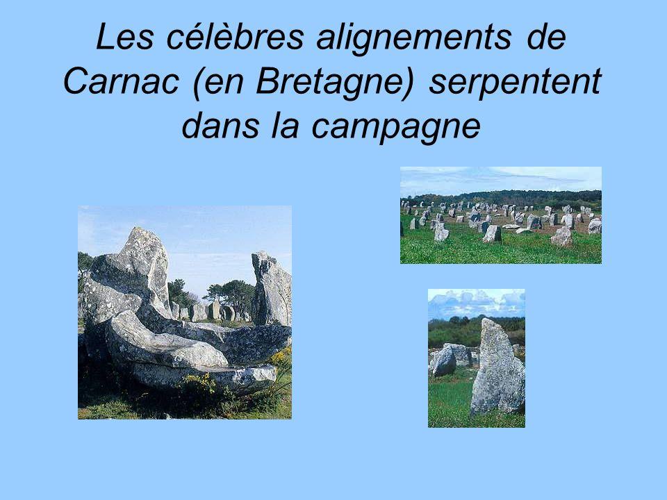 Les célèbres alignements de Carnac (en Bretagne) serpentent dans la campagne