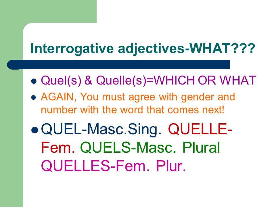 Quelle heure est-il. What time is it. Time to learn Quel, Quels, Quelle and Quelles.