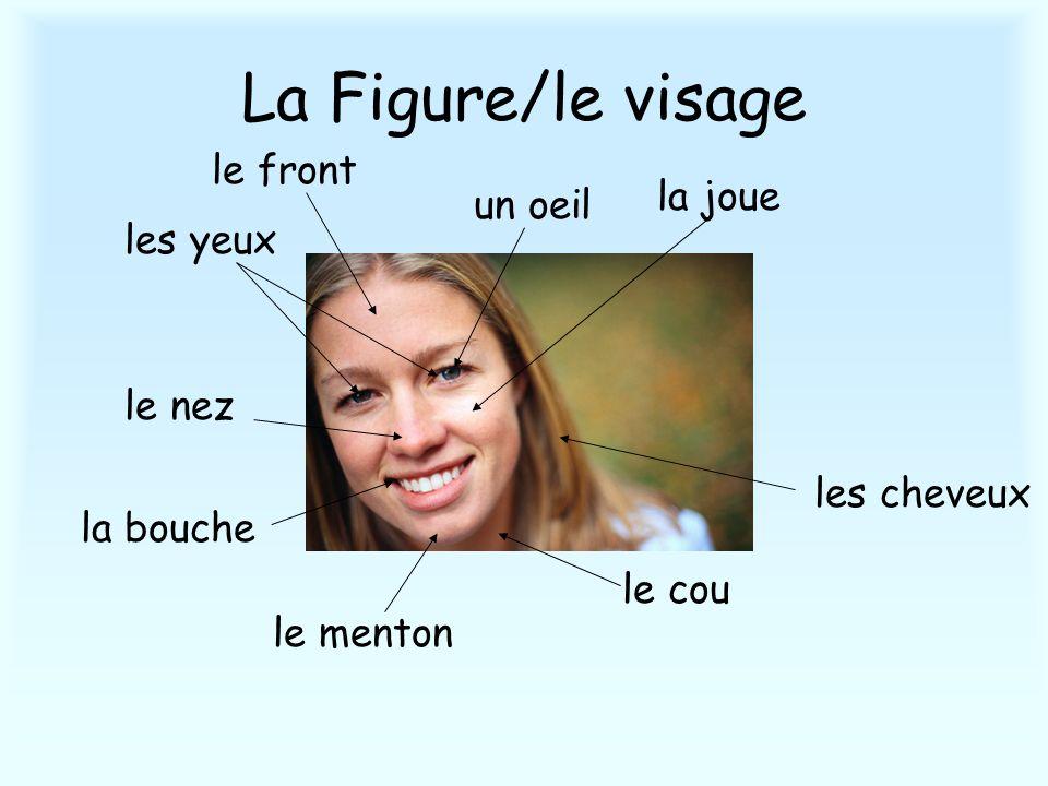 La Figure/le visage les cheveux le front le nez la bouche un oeil le menton la joue le cou les yeux