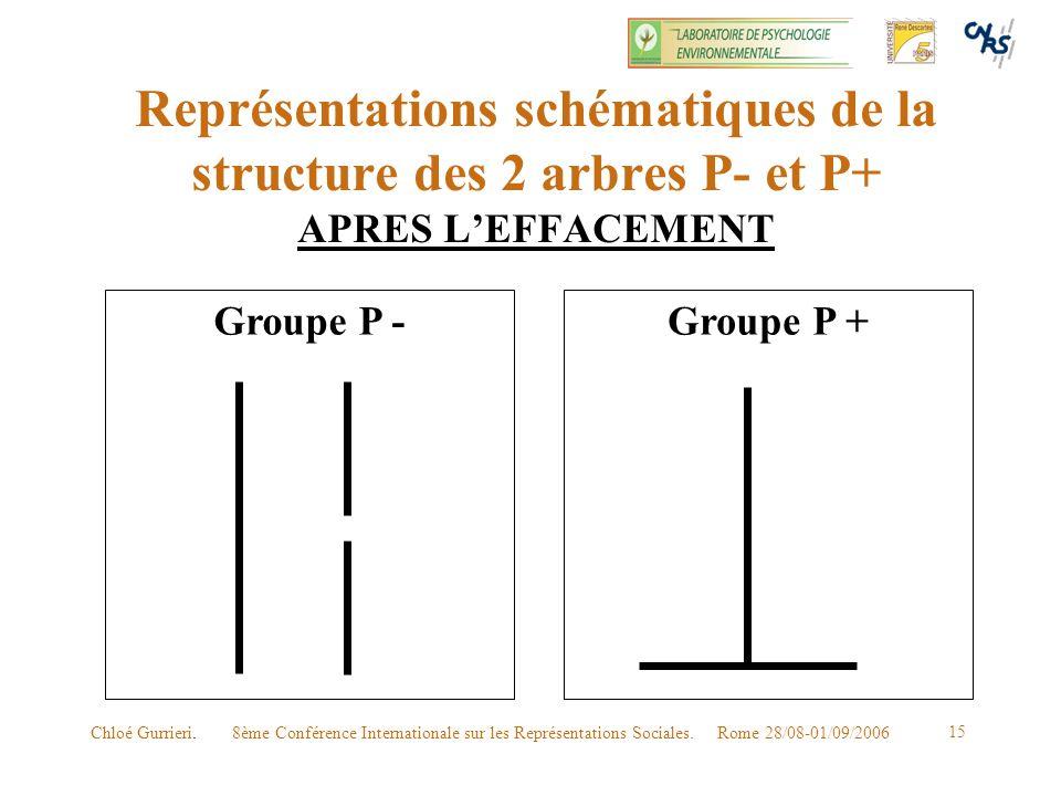 8ème Conférence Internationale sur les Représentations Sociales. Rome 28/08-01/09/2006Chloé Gurrieri. 15 Représentations schématiques de la structure