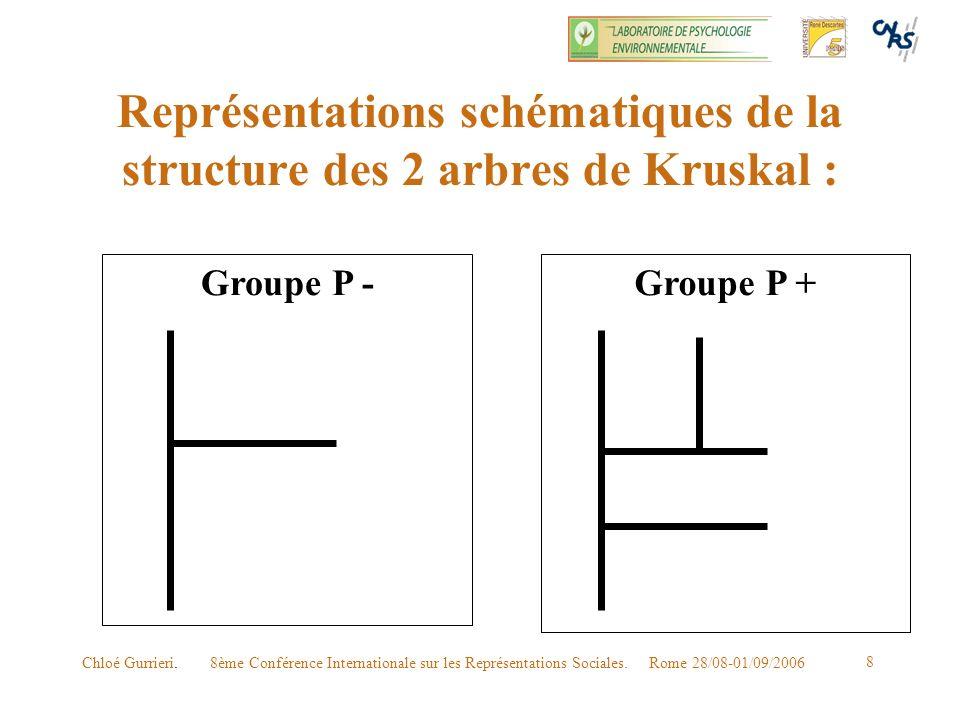 8ème Conférence Internationale sur les Représentations Sociales. Rome 28/08-01/09/2006Chloé Gurrieri. 8 Représentations schématiques de la structure d