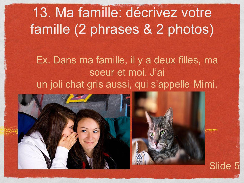 13. Ma famille: décrivez votre famille (2 phrases & 2 photos) Ex. Dans ma famille, il y a deux filles, ma soeur et moi. Jai un joli chat gris aussi, q