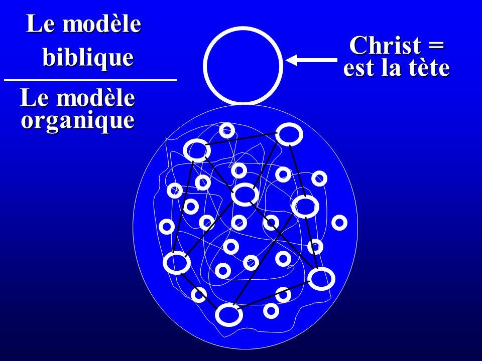 Christ = est la tète Le modèle organique biblique