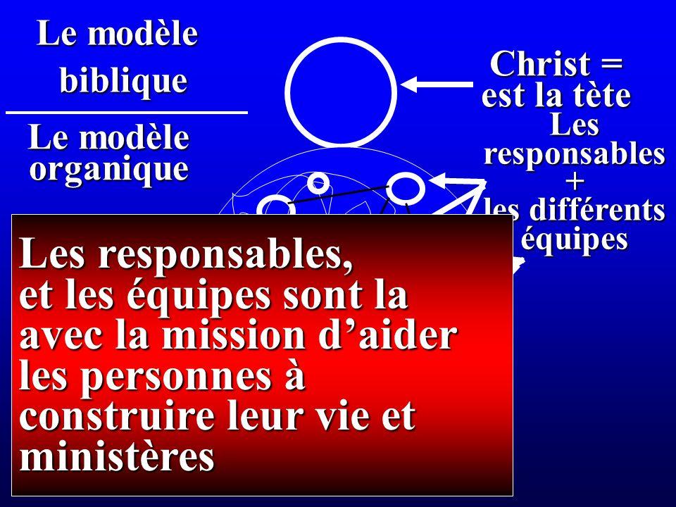 Christ = est la tète Le modèle organique biblique Lesresponsables+ les différents équipes Les responsables, et les équipes sont la avec la mission daider les personnes à construire leur vie et ministères