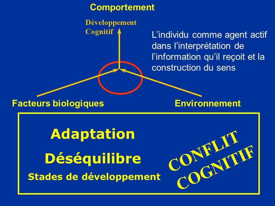 Adaptation Déséquilibre Facteurs biologiquesEnvironnement Comportement Développement Cognitif Lindividu comme agent actif dans linterprétation de linf