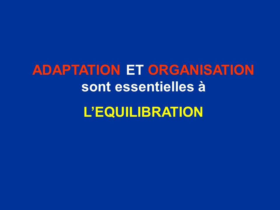 ADAPTATION ET ORGANISATION sont essentielles à LEQUILIBRATION