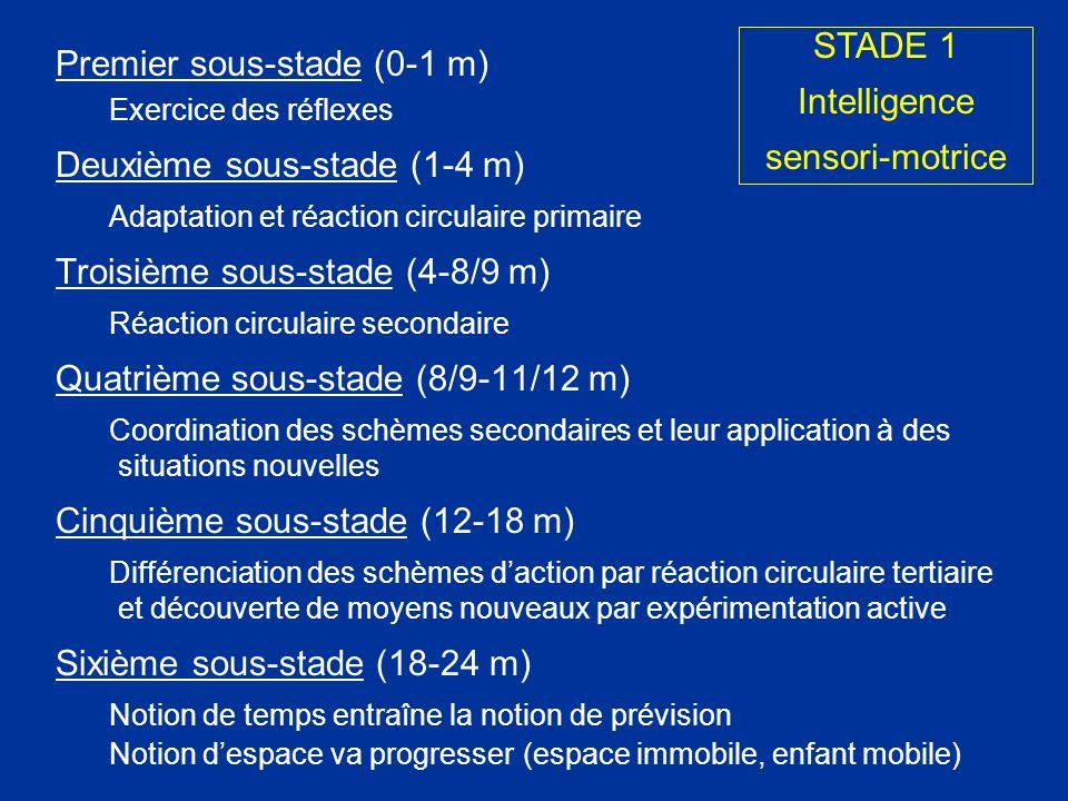 Premier sous-stade (0-1 m) Exercice des réflexes Deuxième sous-stade (1-4 m) Adaptation et réaction circulaire primaire Troisième sous-stade (4-8/9 m)