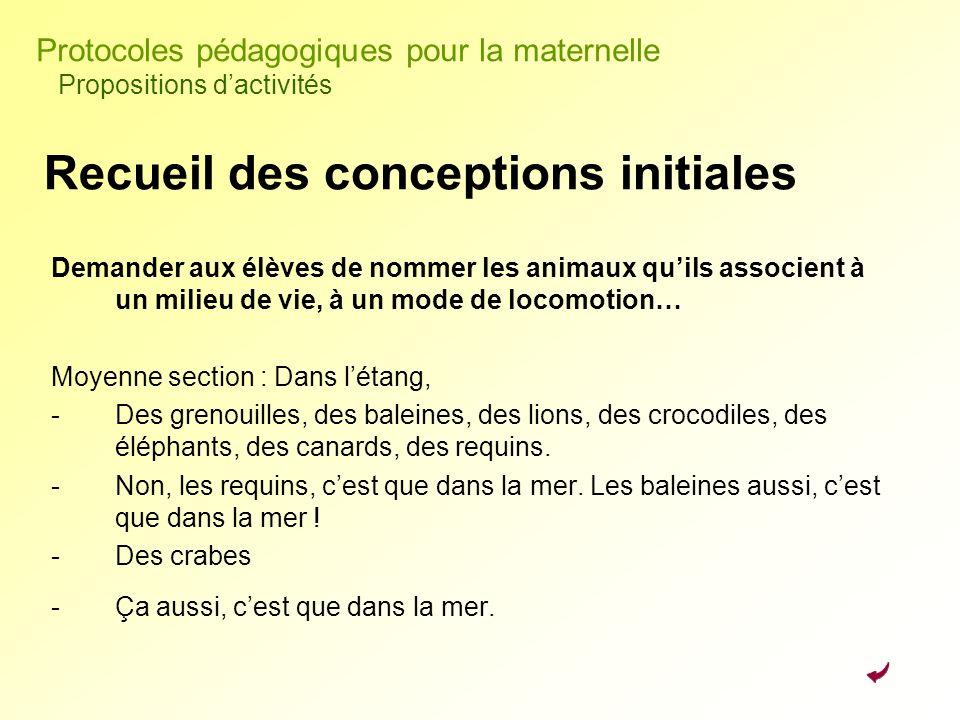 Recueil des conceptions initiales Demander aux élèves de nommer les animaux quils associent à un milieu de vie, à un mode de locomotion… Moyenne secti