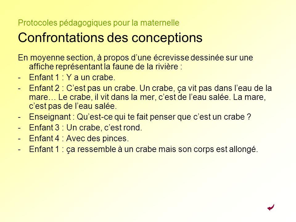 Protocoles pédagogiques pour la maternelle Confrontations des conceptions En moyenne section, à propos dune écrevisse dessinée sur une affiche représe